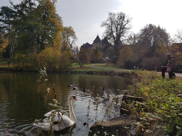 Schlosspark Laubach