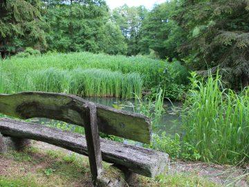 Ferienhaus Naturliebe Am Karpfenteich