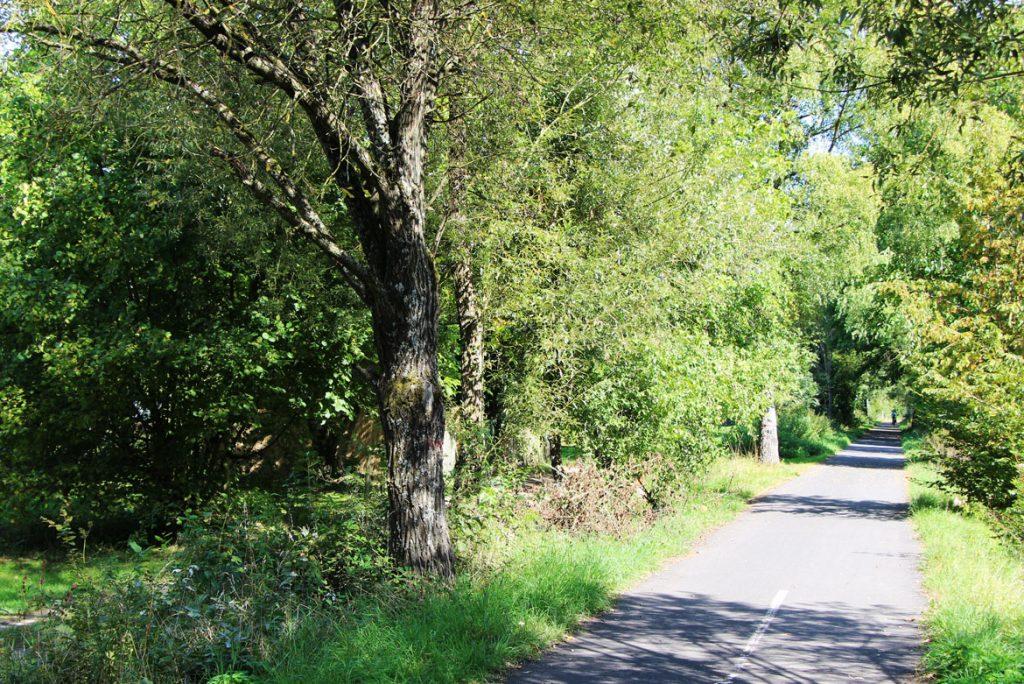 Urlaub mit dem Fahrrad im Vogelsberg, Fahrradurlaub auf Bahnlinien in Deutschland Vogelsberg, Hessen