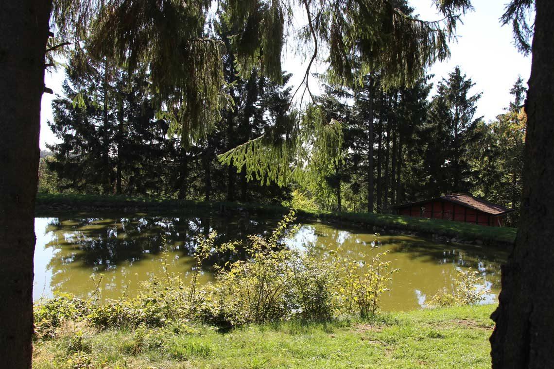 Teich bei BIlstein
