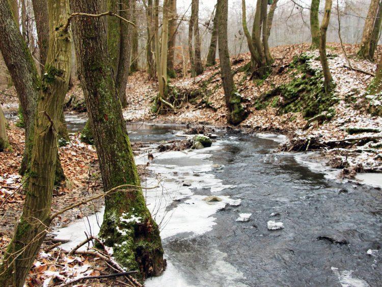 Horloff im Winter in Gonterskirchen in Vogelsberg