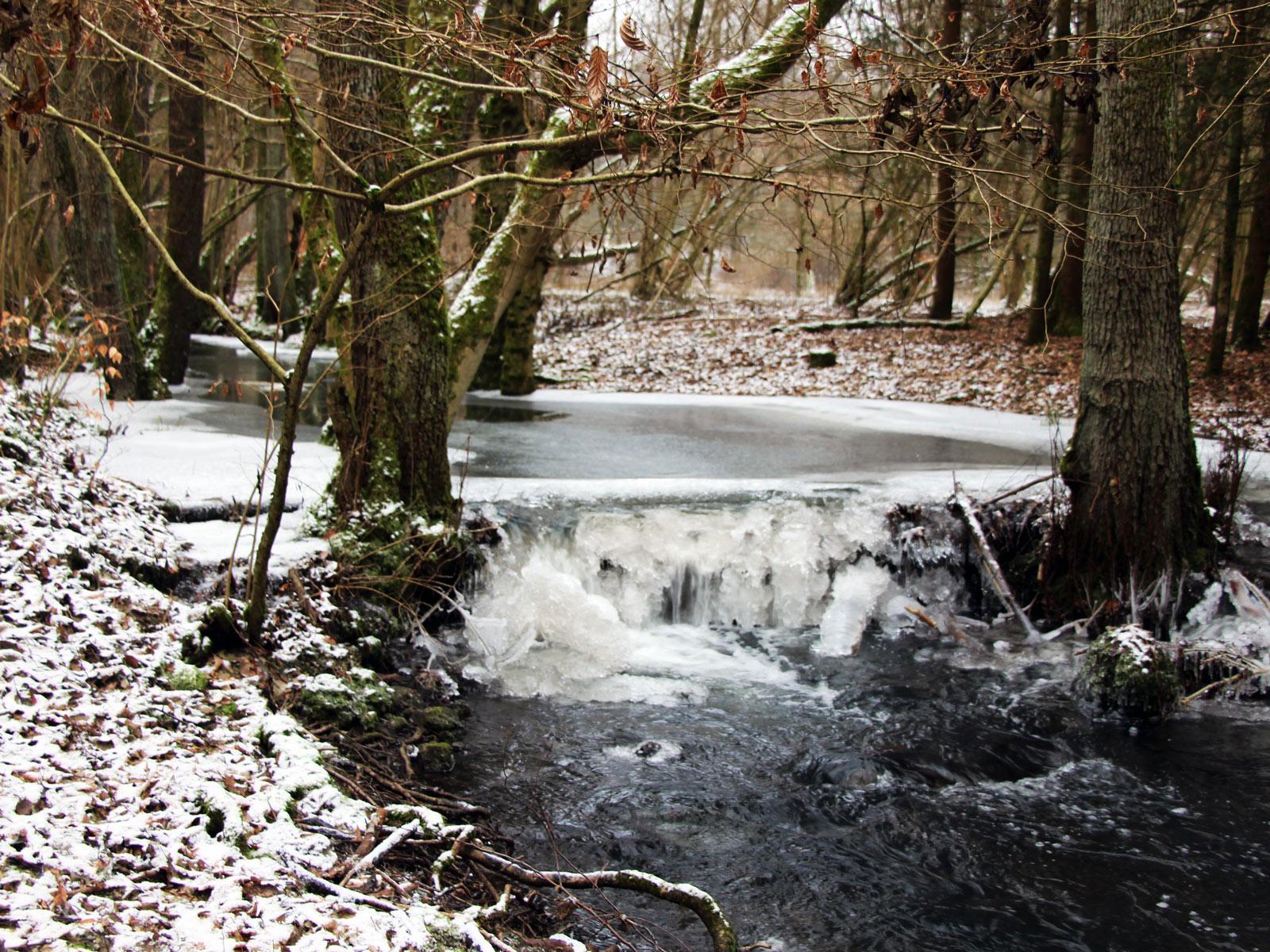 Horloff im Winter in Gonterskirchen, Laubach, Vogelsberg
