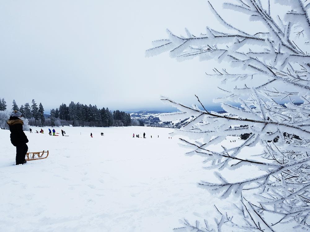 Skigebiet, Ski, Schnee, Skifahren in Vogelsberg, Hessen Deutschland Rodeln Hoherodskopf Vogelsberg