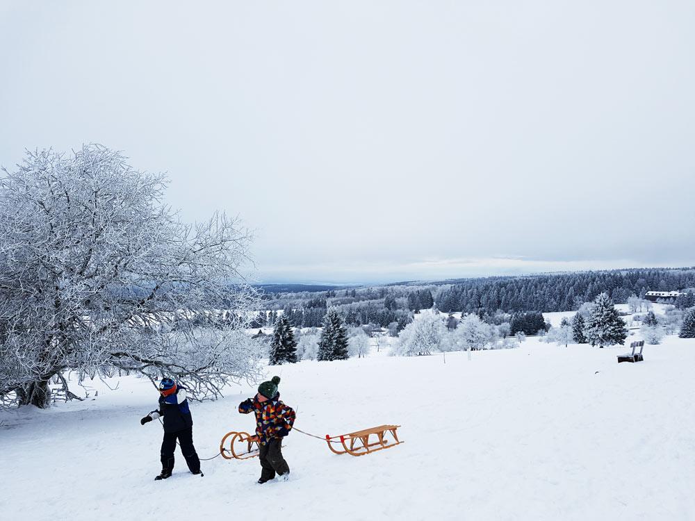 Rodeln auf Hoherodskopf Skigebiet, Ski, Schnee, Skifahren in Vogelsberg, Hessen Deutschland
