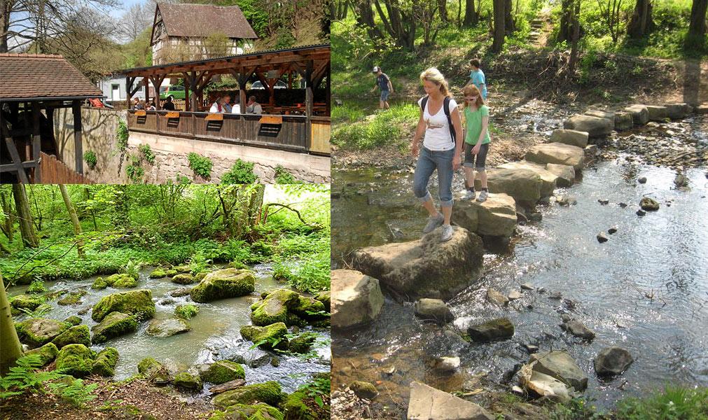 Schächerbachtour  im Vogelsberg Wandern Vogelsberg, Wandern in Hessen, Wanderwege Vogelsberg