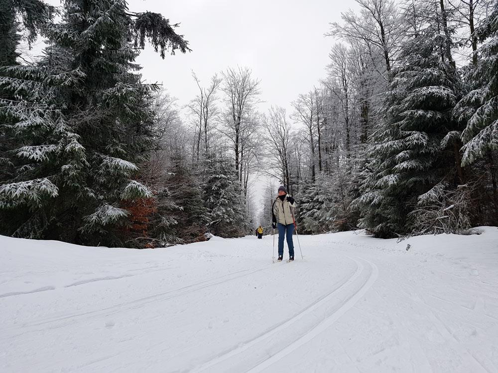 Skilanglauf Loipe Hoherodskopf Vogelsberg Skilanglauf auf Hoherdorskopf