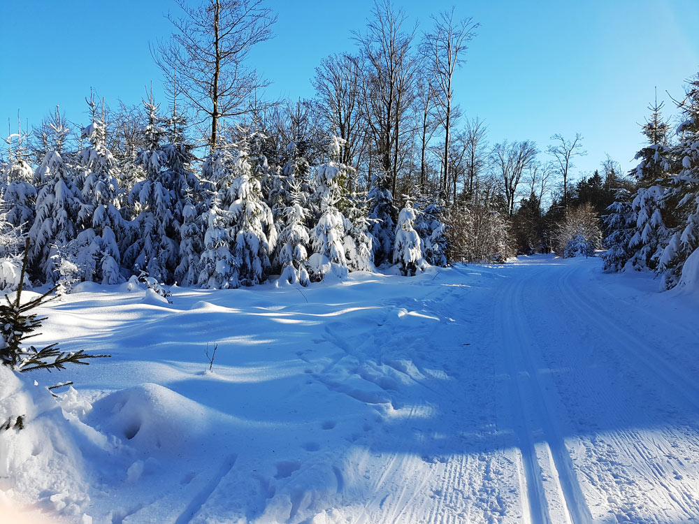 Skigebiet, Ski, Schnee, Skifahren in Vogelsberg, Hessen Deutschland Skilanglauf - Loipen auf Hoherodskopf
