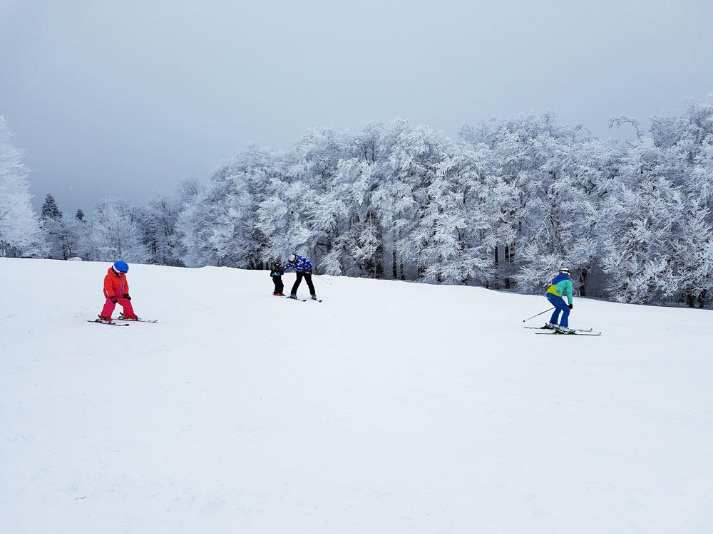 Vogelsberg Hoherodskopf Skifahren Skigebiet, Ski, Schnee, Skifahren in Vogelsberg, Hessen Deutschland